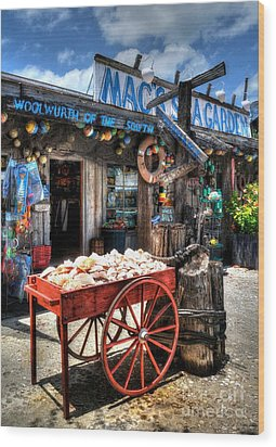 Colors Of Key West 3 Wood Print by Mel Steinhauer