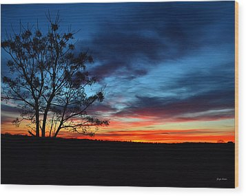 Colors Of Nature - Sunrise 001 Wood Print by George Bostian