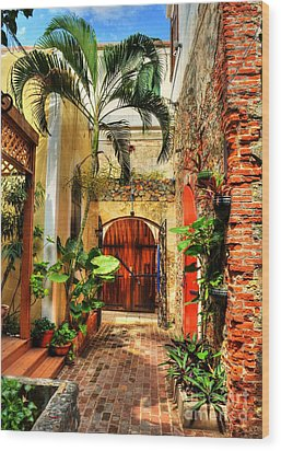 Colors Of Saint Thomas 1 Wood Print by Mel Steinhauer