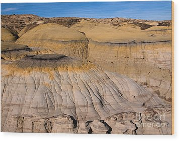 Colors Of The Badlands Wood Print by Vivian Christopher