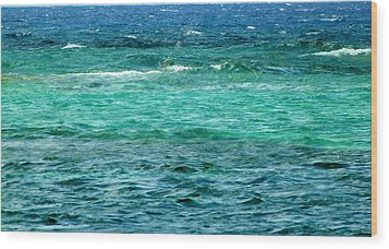 Colors Of The Sea  Wood Print by Amar Sheow