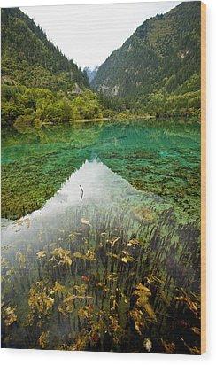 Colors Of Tibet Jiuzhaigou Wood Print by Sundeep Bhardwaj Kullu sundeepkulluDOTcom