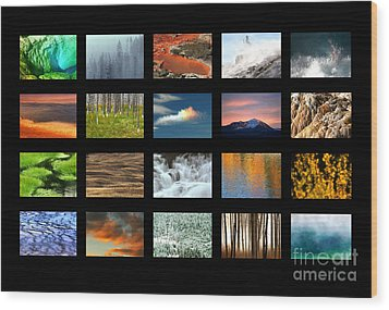 Wood Print featuring the photograph Colors Of Yellowstone by Clare VanderVeen