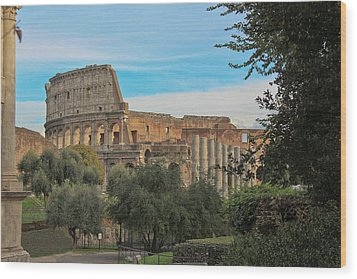 Colosseum Afar Wood Print