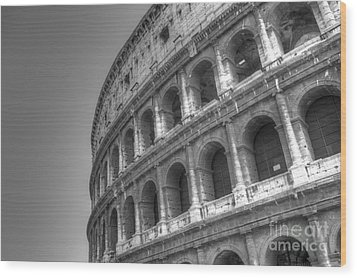 Colosseum  Wood Print by Alex Dudley