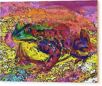Colour Frog 2 Wood Print