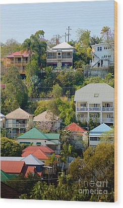 Colourful Queenslander Houses On A Steep Hillside  Wood Print by David Hill