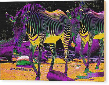Colourful Zebras  Wood Print by Aidan Moran