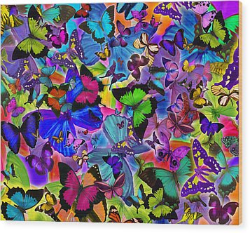 Colours Of Butterflies Wood Print by Alixandra Mullins