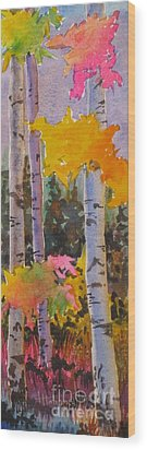 Colours Of The Rainbow Wood Print by Mohamed Hirji
