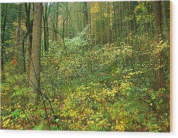 Columbia River Gorge 1 Wood Print by Steve Warnstaff