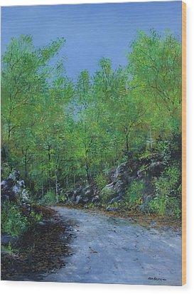 Columbia Trail Wood Print by Ken Ahlering
