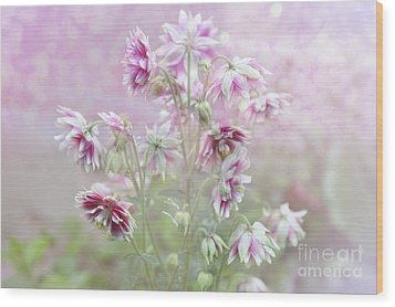 Columbine Beauty Wood Print by Elaine Manley
