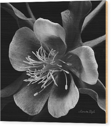 Columbine In Black And White Wood Print by Karen Slagle