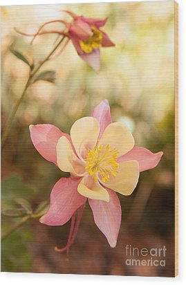 Columbine Wood Print by Roselynne Broussard