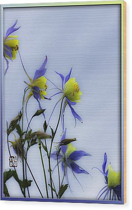Wood Print featuring the photograph Columbines by Peter v Quenter