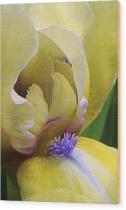 Come A Little Closer Wood Print by Bruce Bley