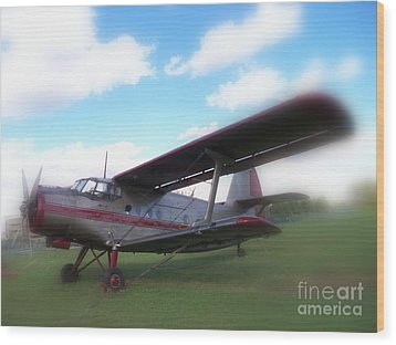 Come Fly With Me Wood Print