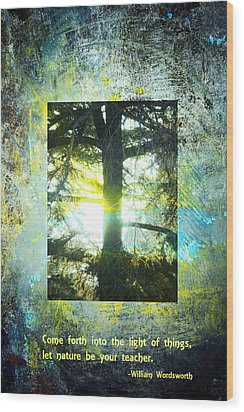 Come Into The Light With Nature Wood Print by John Fish