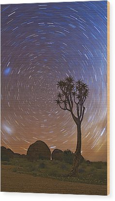 Come To My Garden Wood Print by Basie Van Zyl