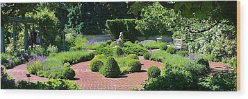 Come To My Garden Wood Print by Bruce Bley