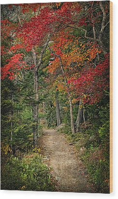 Wood Print featuring the photograph Come Walk With Me by Priscilla Burgers