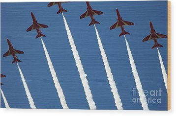 Wood Print featuring the photograph Coming To  Land by Tracey Williams