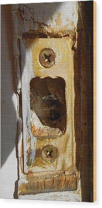 Comings And Goings Wood Print by Aliceann Carlton
