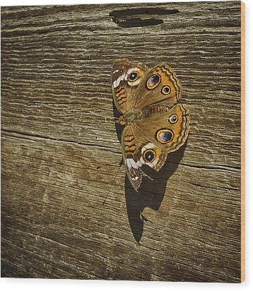 Common Buckeye With Torn Wing Wood Print by Lynn Palmer