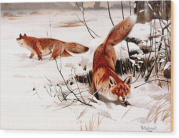 Common Fox In The Snow Wood Print by Friedrich Wilhelm Kuhnert