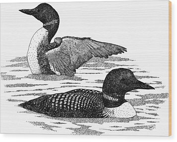Common Loons Wood Print by Roger Hall
