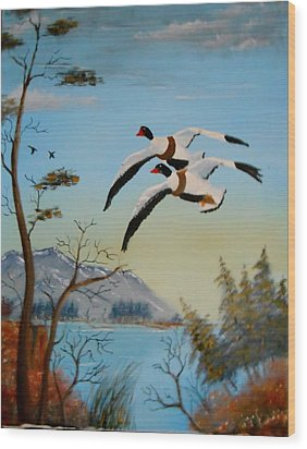 Wood Print featuring the painting Common Shelducks by Al  Johannessen