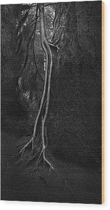 Companion Wood Print by Naman Imagery