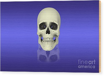 Conceptual View Of Human Skull Wood Print by Stocktrek Images