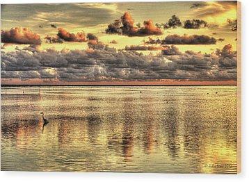 Conch Key Bay Sunset Wood Print by Julis Simo