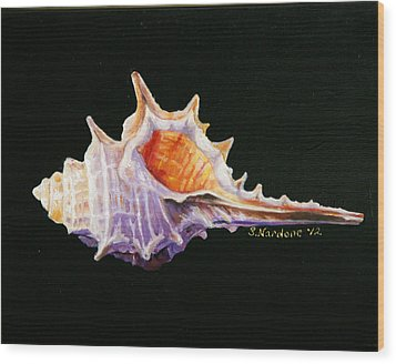 Wood Print featuring the painting Conch Shell by Sandra Nardone