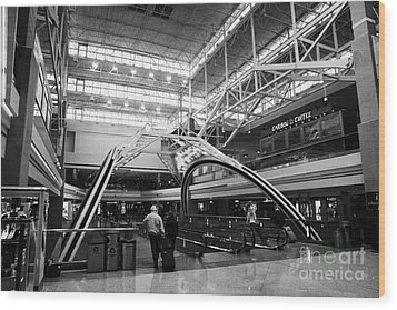 concourse B at Denver International Airport Colorado USA Wood Print by Joe Fox