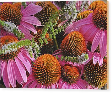 Cone Flowers And Mint Wood Print
