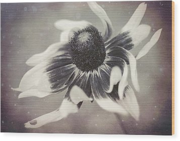 Coneflower In Monochrome Wood Print