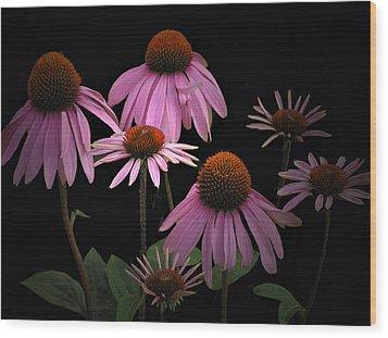 Coneflowers Wood Print by Judy  Johnson