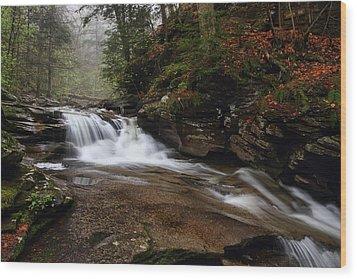Conestoga Falls Wood Print by Mike Farslow