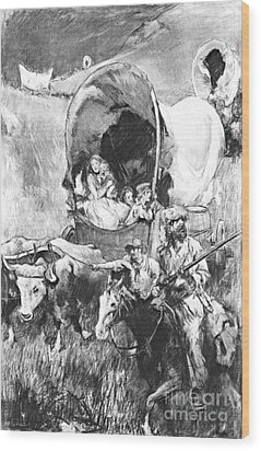 Conestoga Wagons 1890 Wood Print by Padre Art