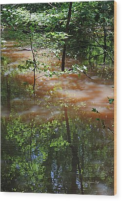 Congaree Swamp In Flood Conditions Wood Print by Suzanne Gaff