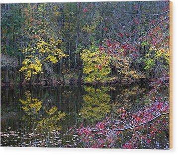 Congaree Swamp Wood Print by Skip Willits