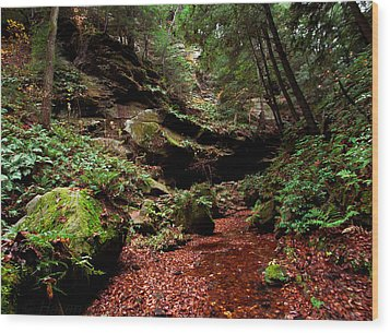 Wood Print featuring the photograph Conkles Hollow Gorge by Haren Images- Kriss Haren