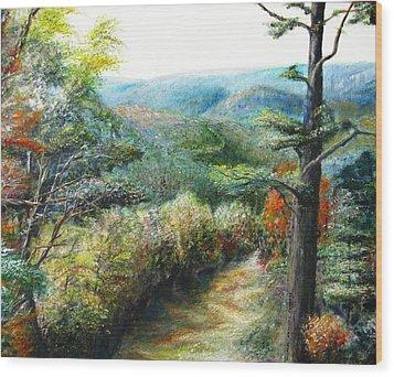 Connecticut Trail Wood Print