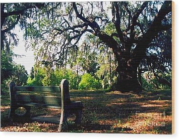 Wood Print featuring the photograph New Orleans Contemplating Solitude by Michael Hoard