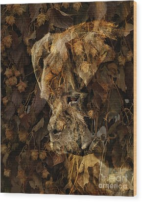 Contemplation Wood Print by Judy Wood