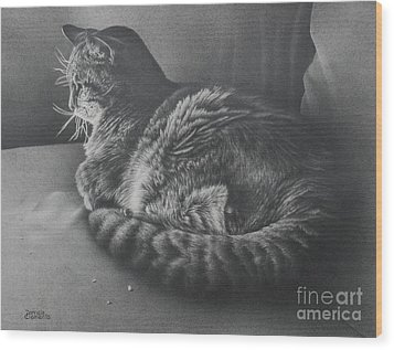 Contentment Wood Print by Pamela Clements