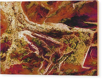 Contours 080 Abstract Wood Print by Natalie Kinnear